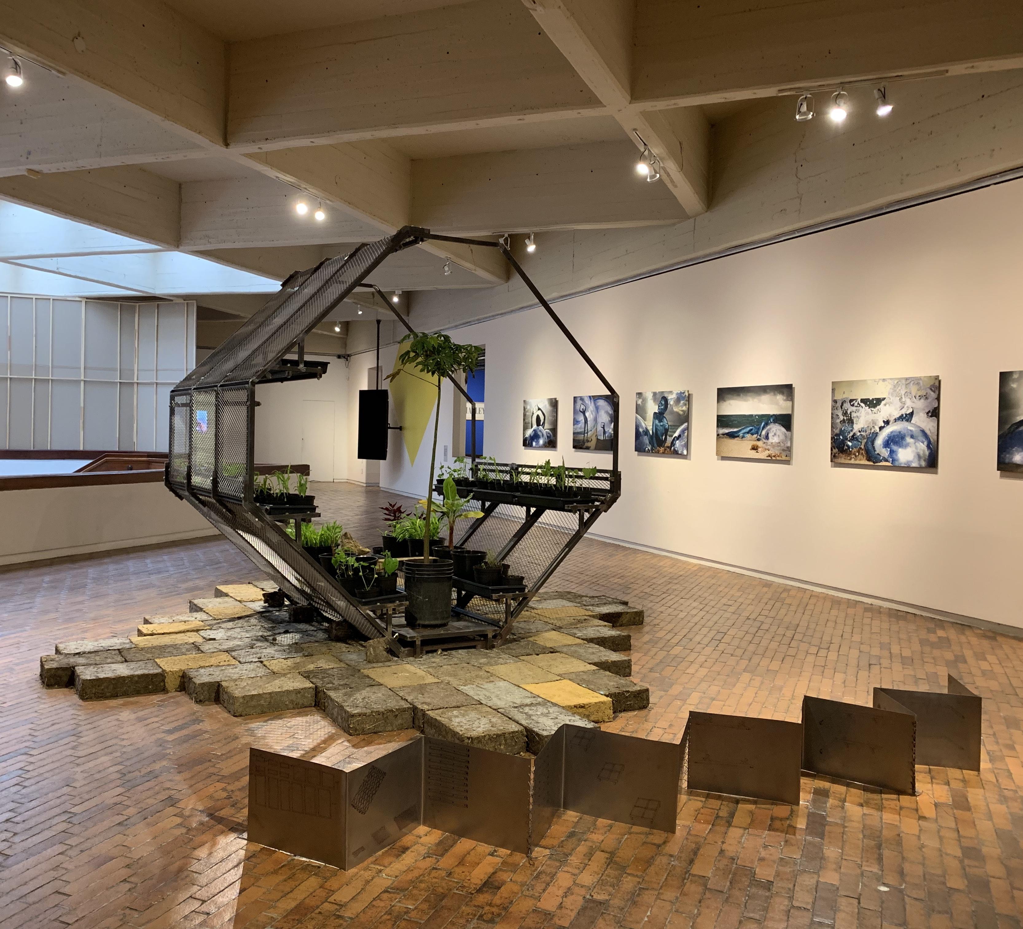 On View En Exhibicion Beatriz Cortez